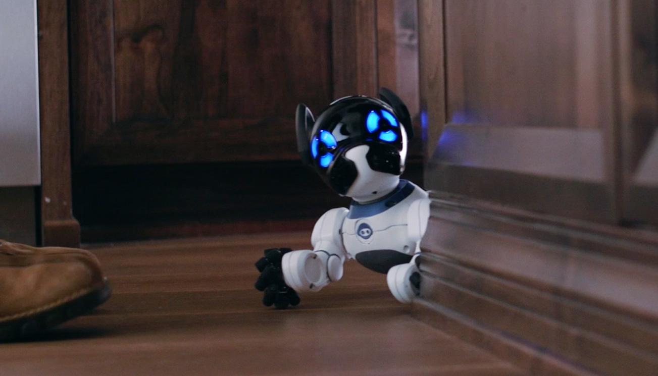 Poznaj CHiP'a – inteligentnego robo-psiaka